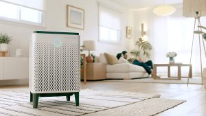 Best Air Purifiers for Smoke Removal